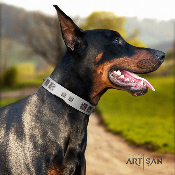 Doberman full grain genuine leather dog collar with adornments for your attractive dog