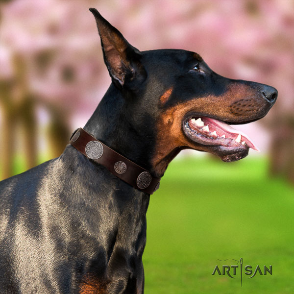 Doberman natural genuine leather dog collar with decorations for your beautiful canine