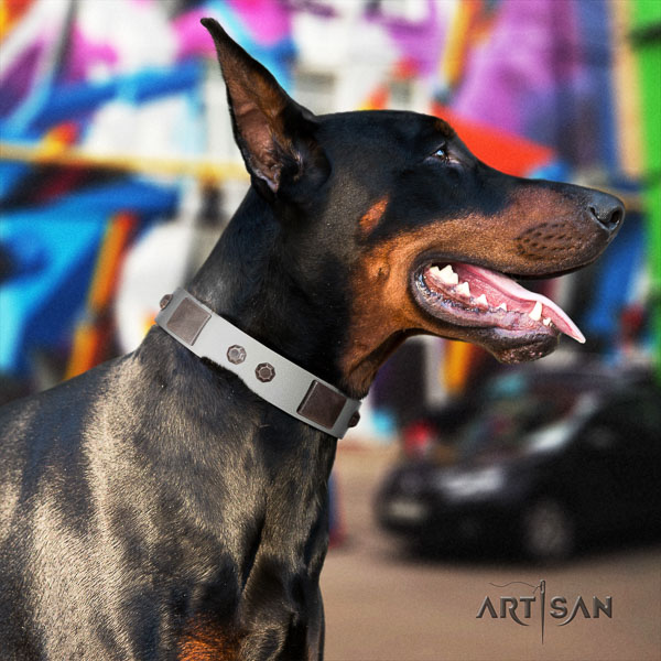 Doberman genuine leather dog collar with embellishments for your handsome four-legged friend