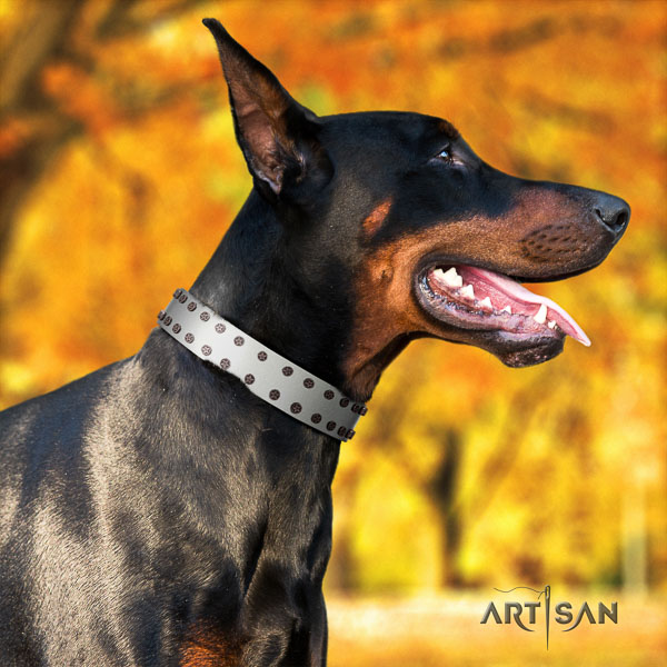 Doberman genuine leather dog collar with decorations for your handsome dog
