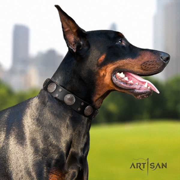 Doberman natural genuine leather dog collar with decorations for your impressive doggie