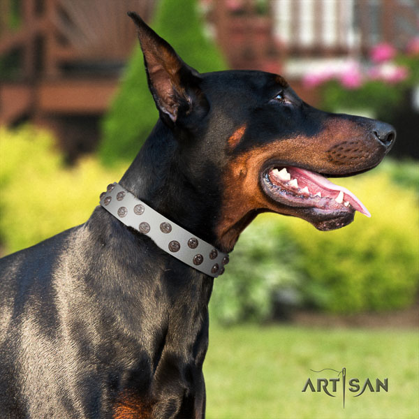 Doberman leather dog collar with studs for your handsome dog