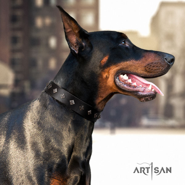 Doberman leather dog collar with studs for your attractive canine