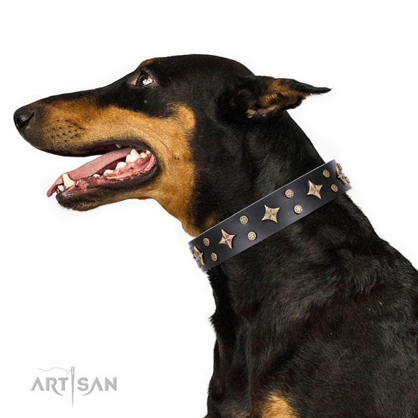 Doberman stylish design full grain genuine leather dog collar for basic training