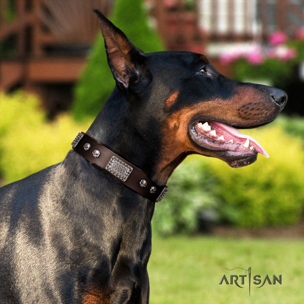 Doberman top notch full grain genuine leather collar with embellishments for your pet