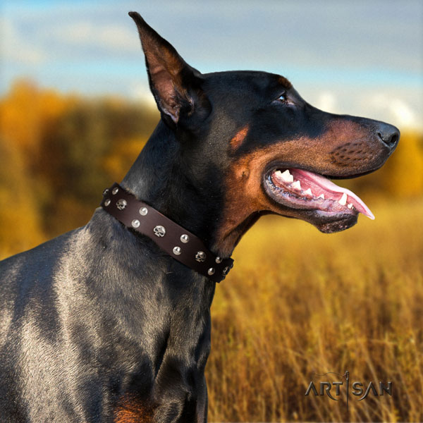 Doberman exceptional natural genuine leather collar with studs for your dog