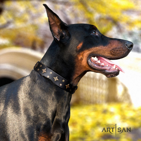 Doberman exceptional natural genuine leather collar with adornments for your dog