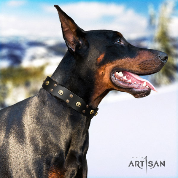Doberman stunning full grain leather collar with studs for your pet