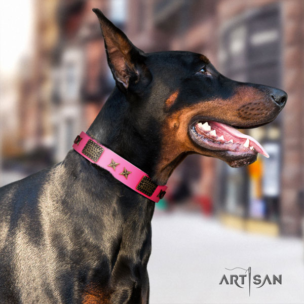 Doberman best quality full grain natural leather collar with adornments for your four-legged friend