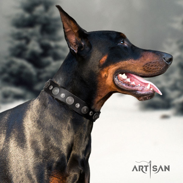 Doberman incredible full grain genuine leather collar with embellishments for your pet
