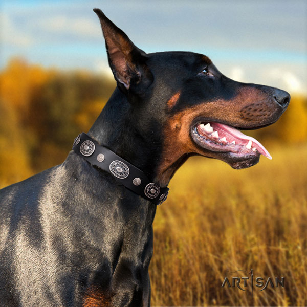 Doberman top notch natural genuine leather collar with embellishments for your pet