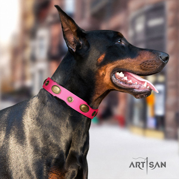 Doberman significant natural genuine leather collar with decorations for your pet