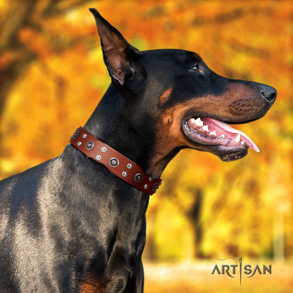 Doberman inimitable full grain leather collar with embellishments for your dog