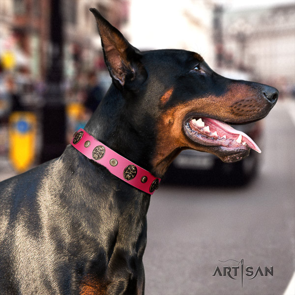 Doberman everyday use leather dog collar with decorations
