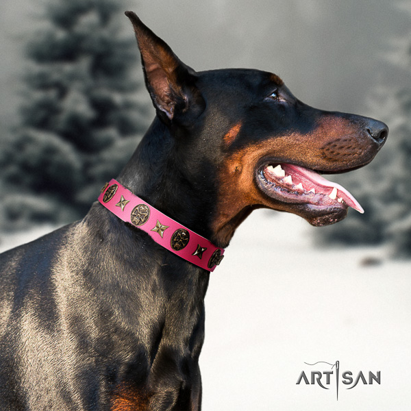 Doberman everyday walking full grain natural leather dog collar with decorations