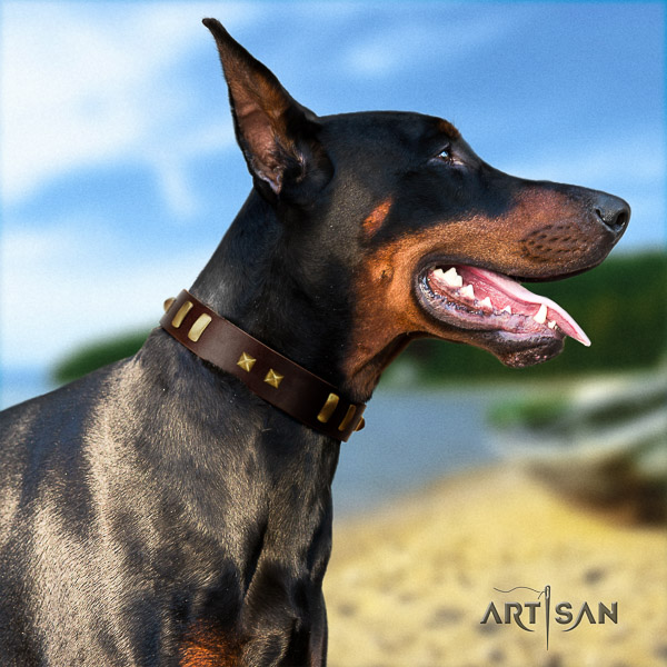Doberman comfortable wearing full grain leather dog collar with embellishments