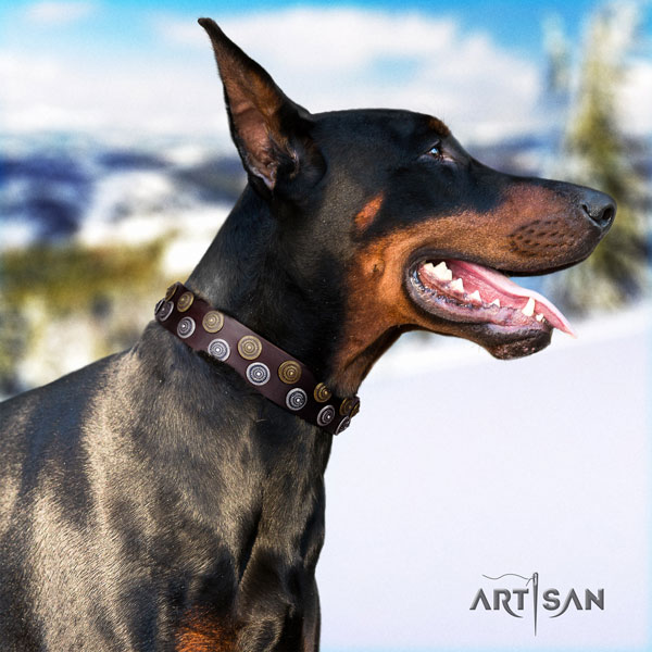 Doberman impressive full grain genuine leather collar with adornments for your dog