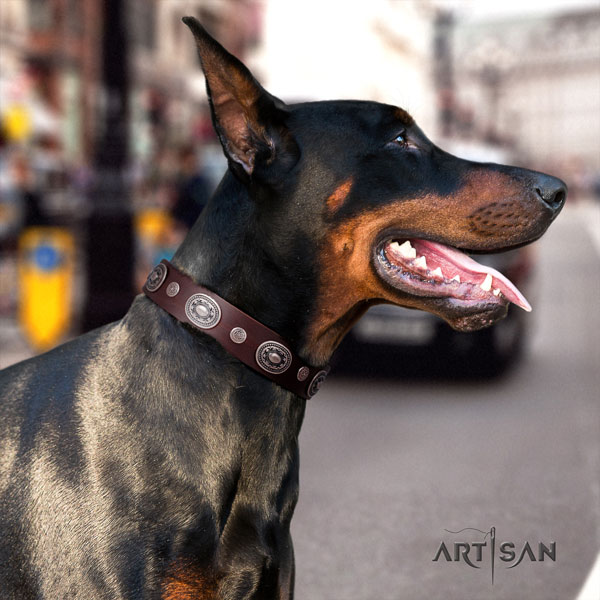 Doberman best quality leather collar with adornments for your dog
