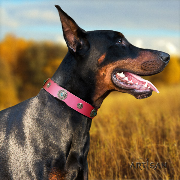 Doberman full grain genuine leather dog collar with embellishments for easy wearing