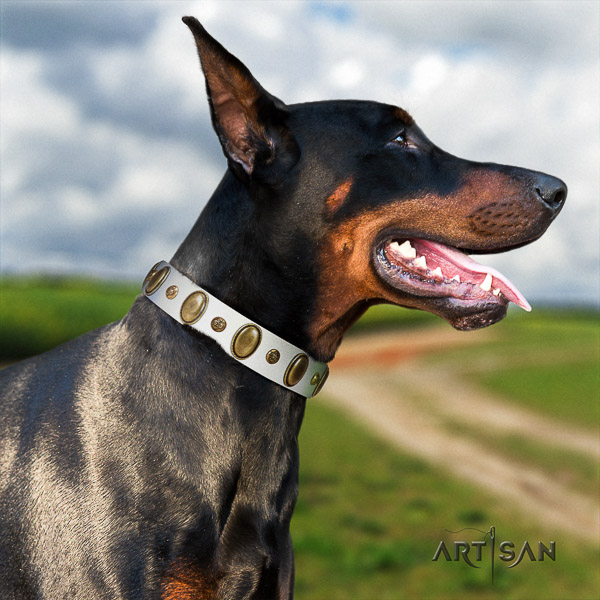 Doberman everyday use full grain natural leather dog collar with embellishments