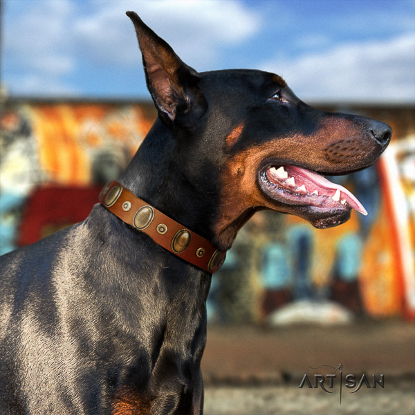 Doberman handy use natural genuine leather dog collar with adornments