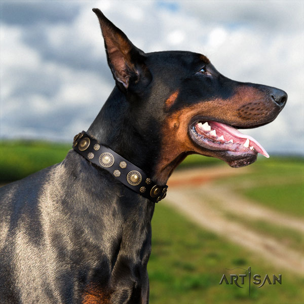 Doberman handcrafted genuine leather collar with embellishments for your dog
