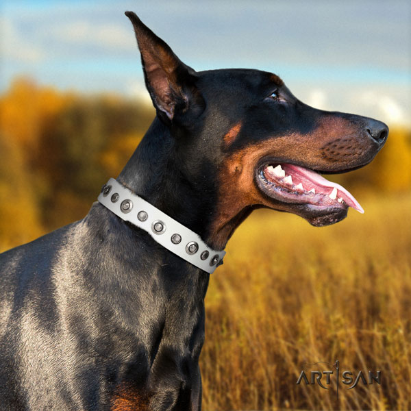 Doberman stylish full grain leather collar with adornments for your canine