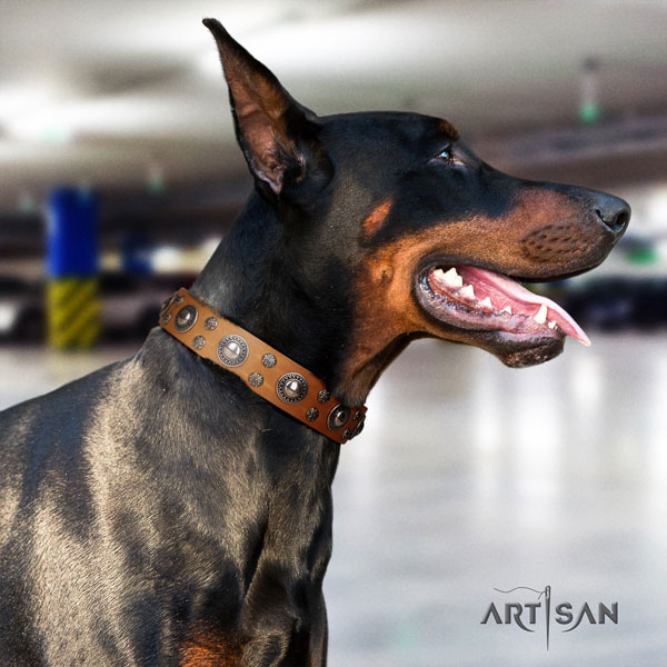 Doberman stylish full grain leather collar with decorations for your canine