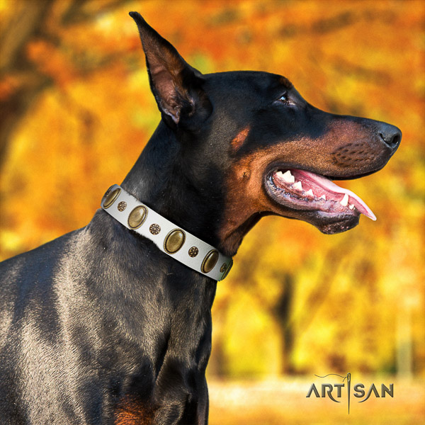 Doberman comfortable wearing full grain natural leather dog collar with studs