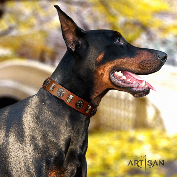 Doberman walking natural genuine leather dog collar with embellishments