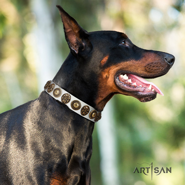 Doberman daily walking natural genuine leather dog collar with adornments