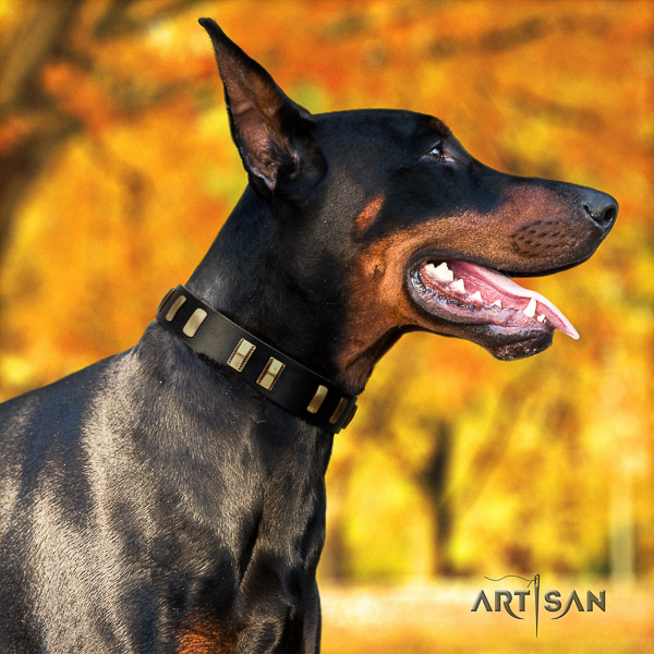 Doberman everyday use natural genuine leather dog collar with adornments
