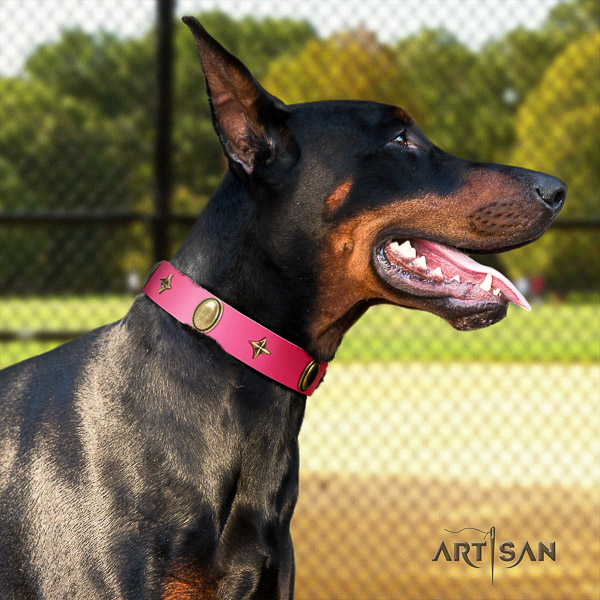 Doberman comfy wearing full grain leather dog collar with studs