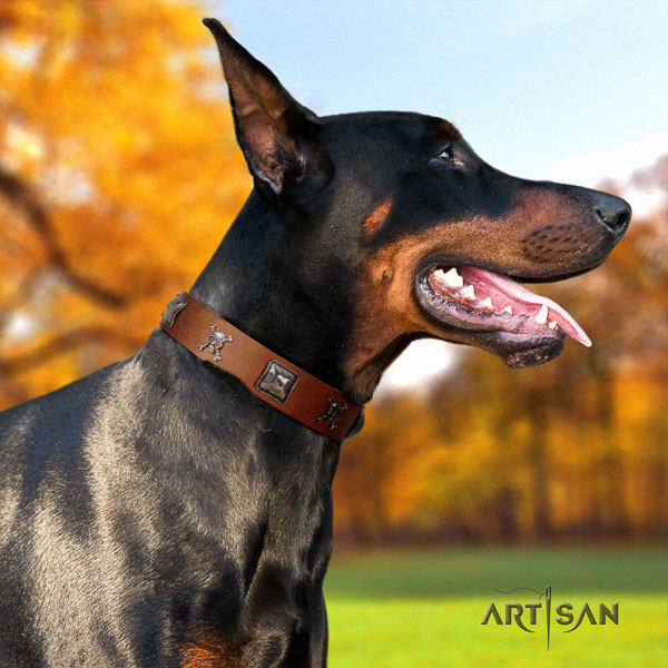 Doberman leather dog collar with studs for your handsome four-legged friend