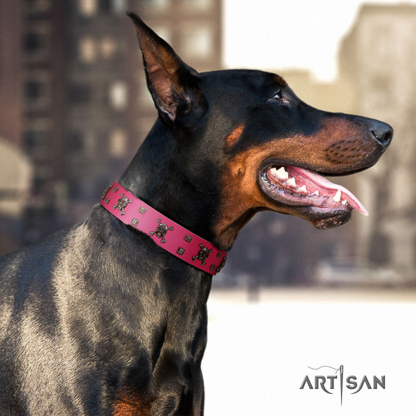 Doberman full grain genuine leather dog collar with studs for your stylish dog