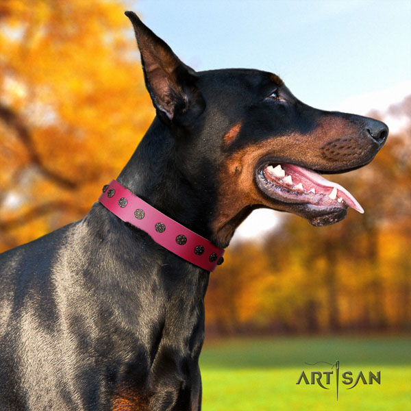 Doberman full grain leather dog collar with embellishments for your impressive pet