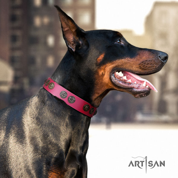 Doberman genuine leather dog collar with studs for your lovely four-legged friend