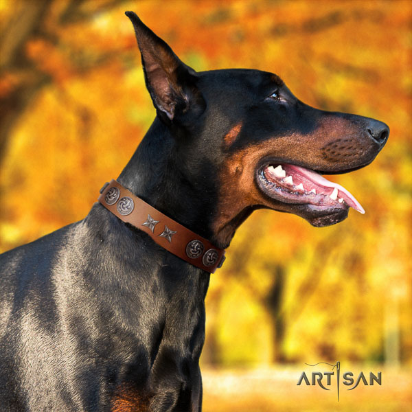 Doberman natural genuine leather dog collar with studs for your attractive doggie