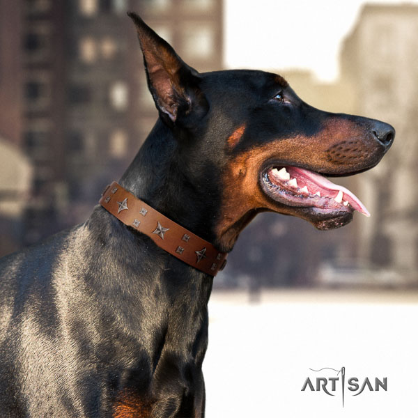 Doberman full grain leather dog collar with decorations for your beautiful pet