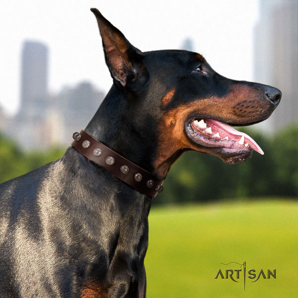 Doberman full grain genuine leather dog collar with studs for your handsome pet