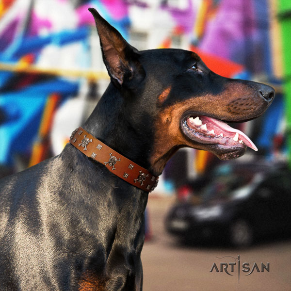 Doberman full grain natural leather dog collar with studs for your beautiful doggie
