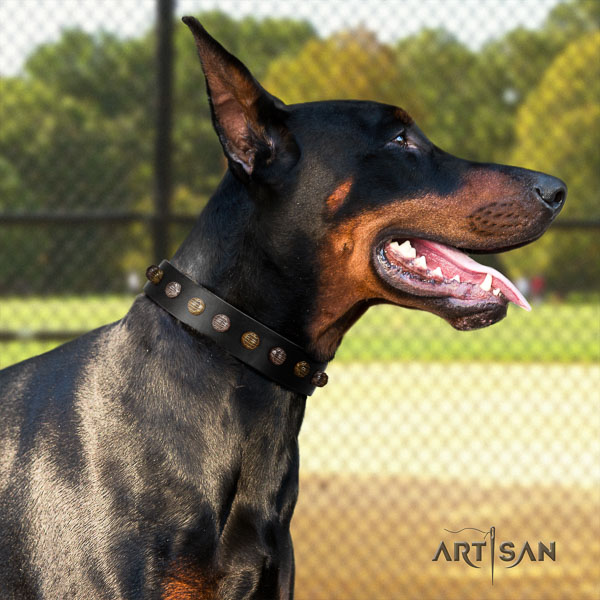 Doberman leather dog collar with embellishments for your lovely dog
