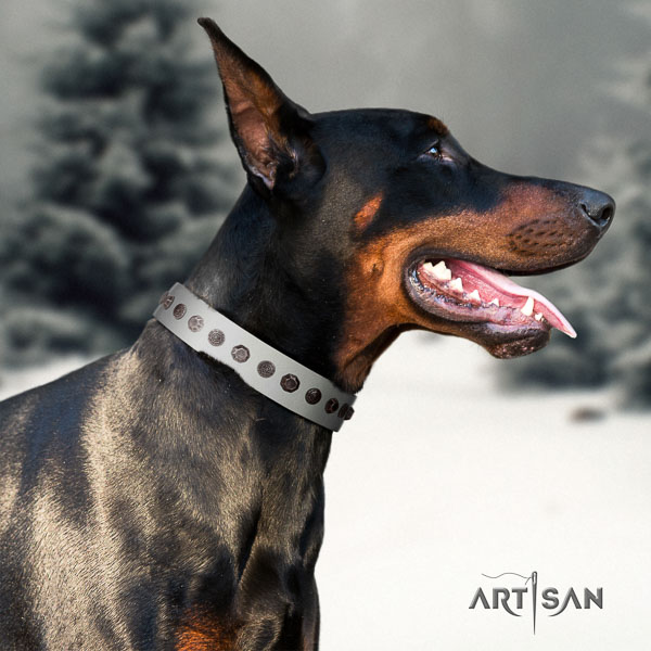 Doberman genuine leather dog collar with studs for your lovely pet