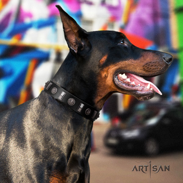 Doberman leather dog collar with adornments for your beautiful doggie