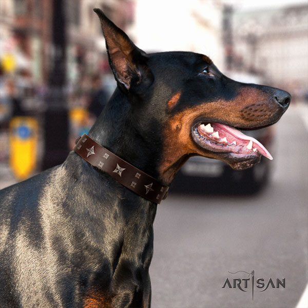 Doberman full grain genuine leather dog collar with adornments for your handsome canine