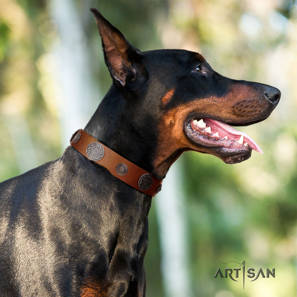 Doberman full grain natural leather dog collar with decorations for your lovely doggie