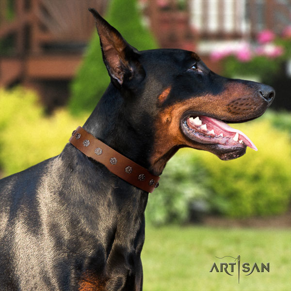 Doberman natural genuine leather dog collar with decorations for your lovely doggie