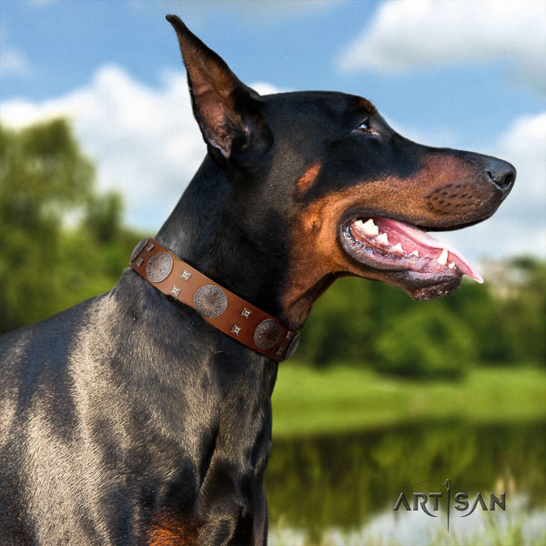 Doberman natural genuine leather dog collar with embellishments for your beautiful canine