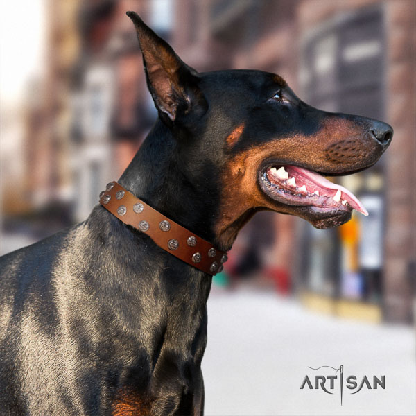 Doberman genuine leather dog collar with studs for your handsome pet