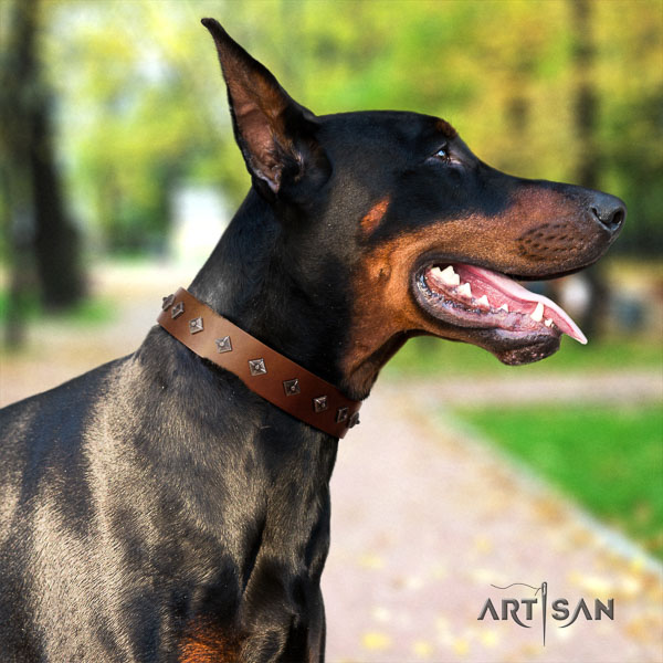 Doberman full grain natural leather dog collar with embellishments for your attractive canine